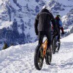 Bonus Bicicletta: app per fare domanda