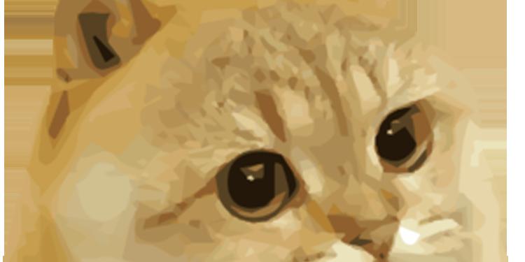 catge